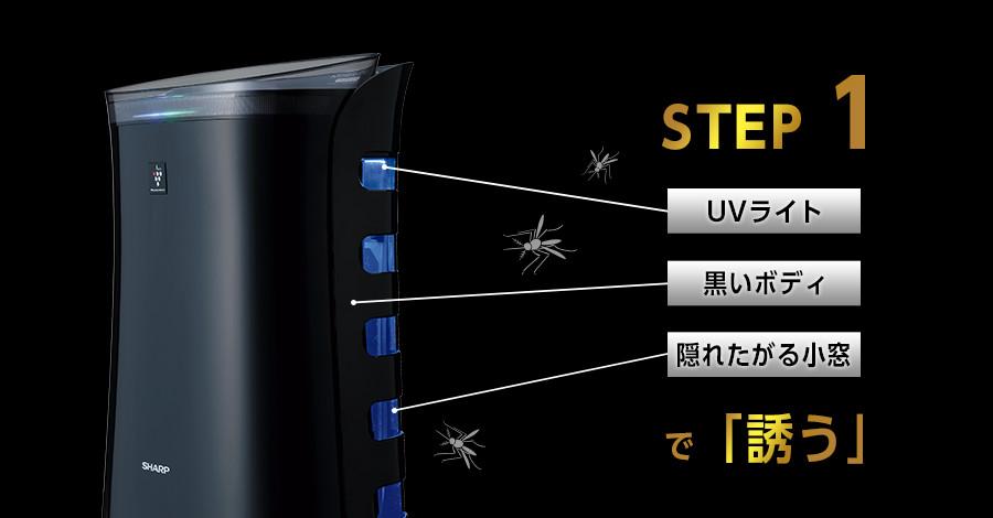 STEP1 蚊を誘う